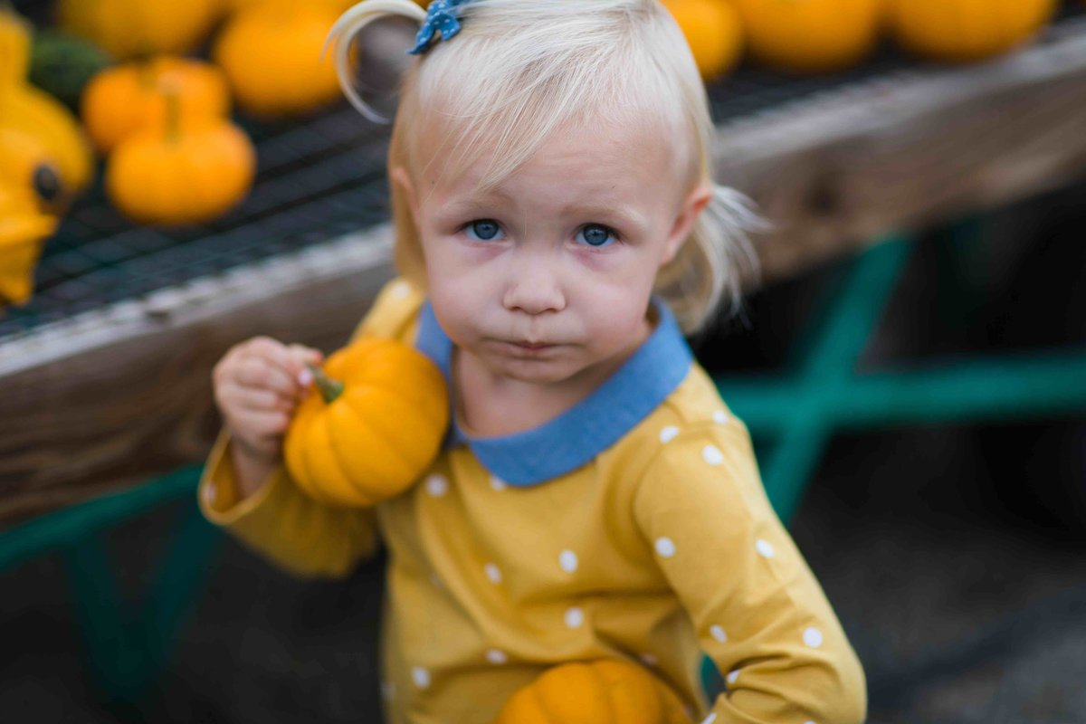 04 girl with pumpkin fall family photos