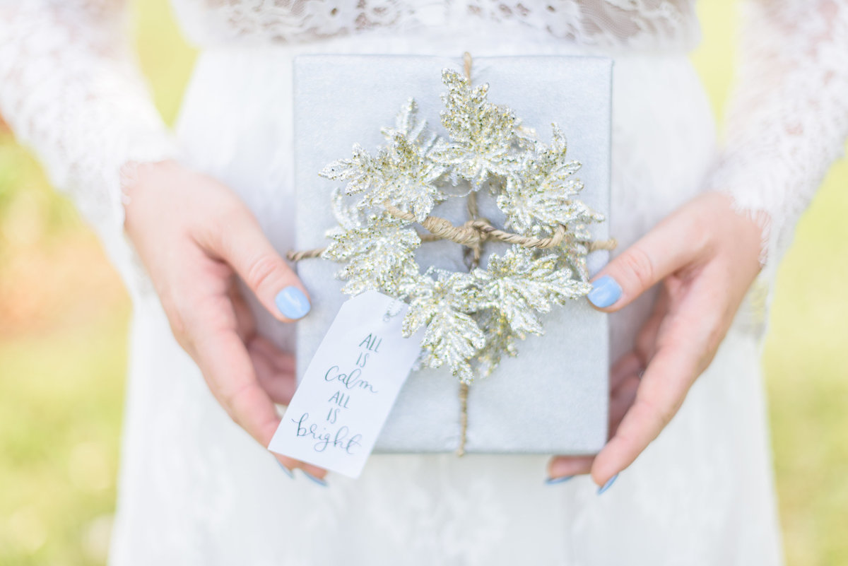Orlando Wedding Photographer | Christmas Holiday Inspiration 7