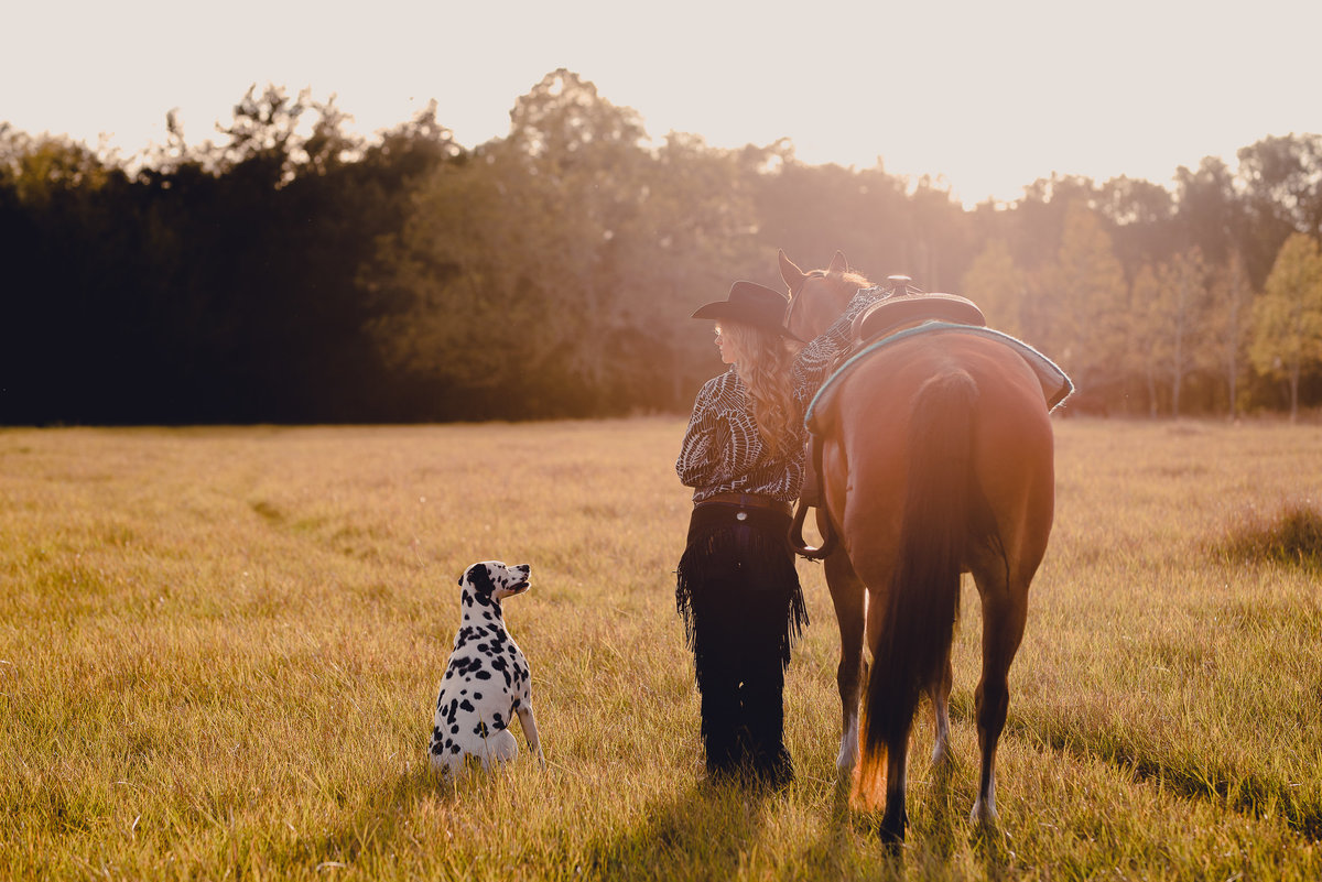 Horse, rider, and dog in the sunset of Gainesville, FL. Photographer specializing in equines.