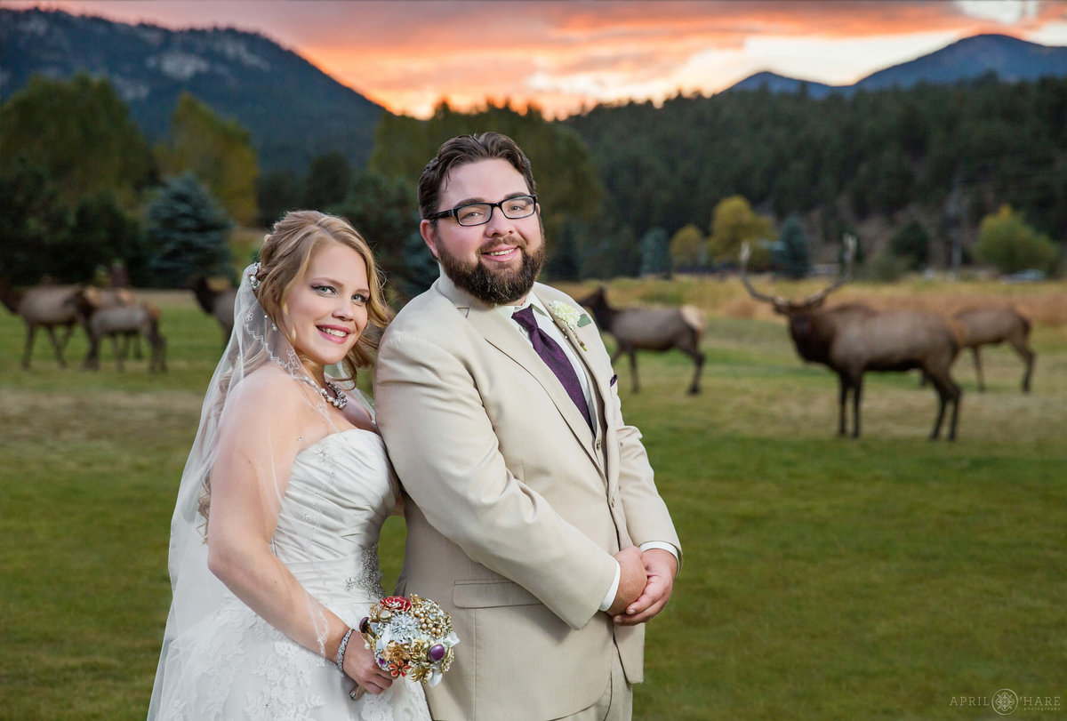 Fall Wedding with Bugling Elk at Sunset Evergreen Lake House in Colorado