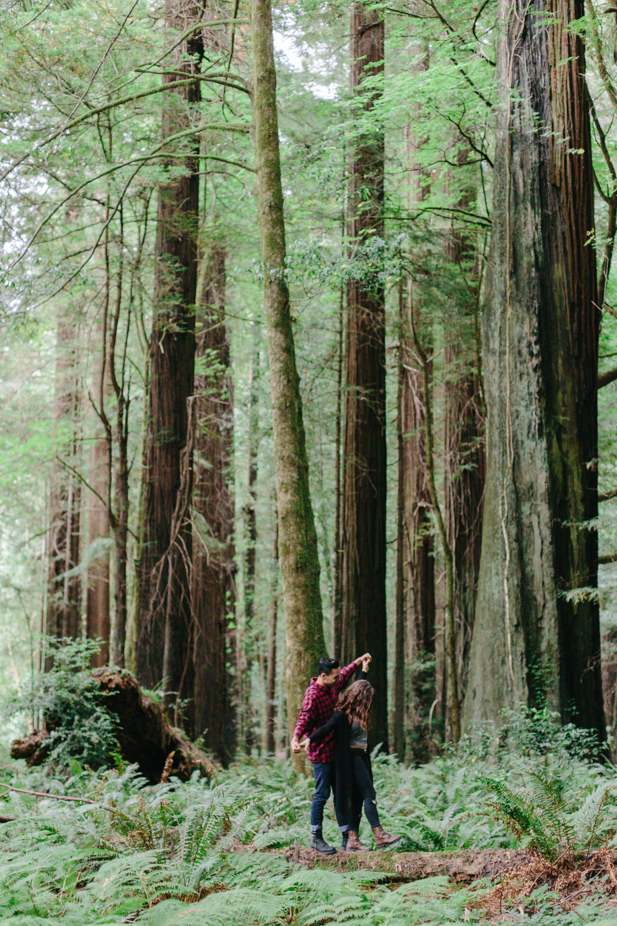Redwood National Park Avenue of the Giants Engagement Session -7475