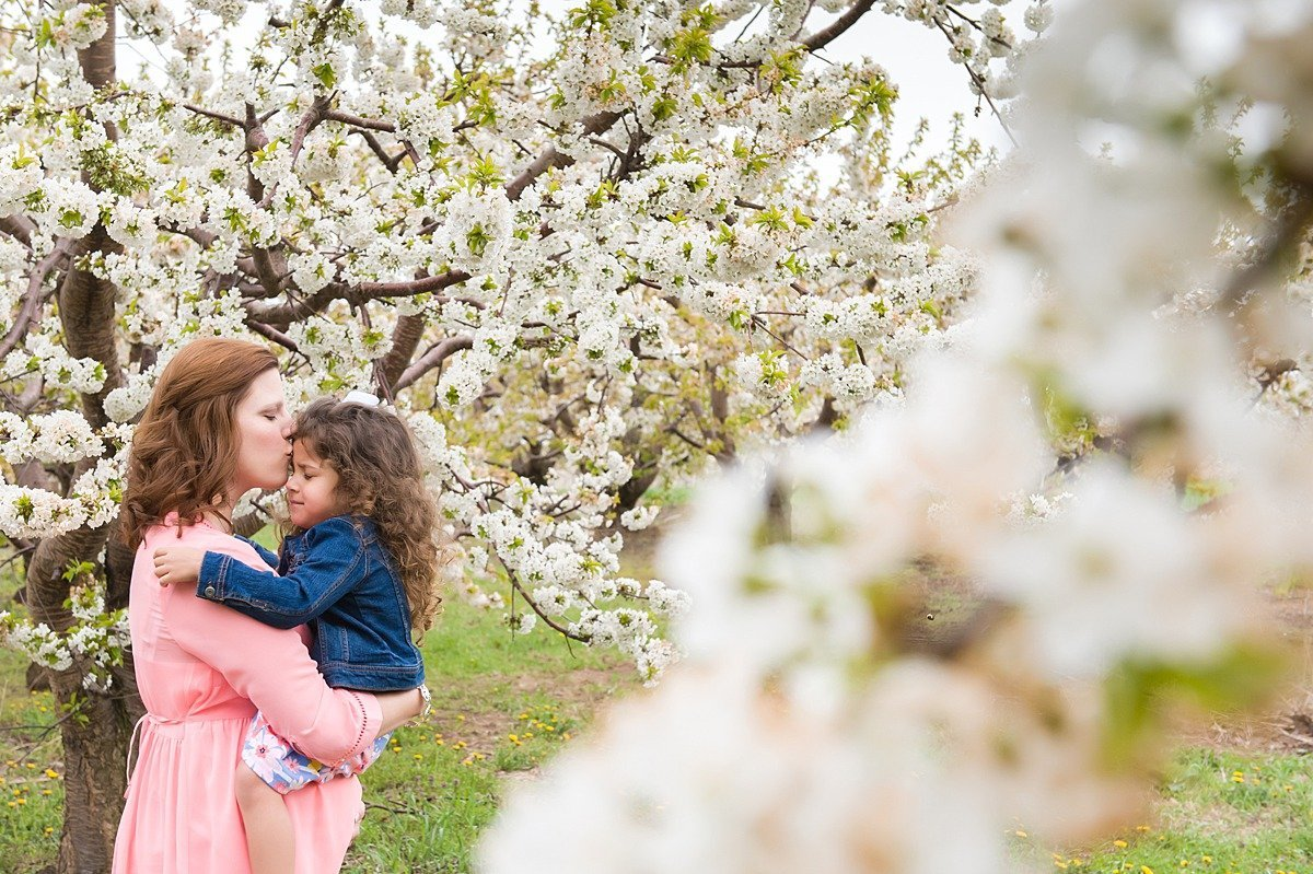 Laura Luft Family Photographer Lifestyle appple blossoms dandelions Photography Elba NY  Western NY fall family lifestyle-85