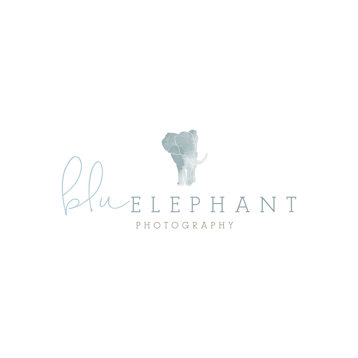 Bluelephant Logo-01