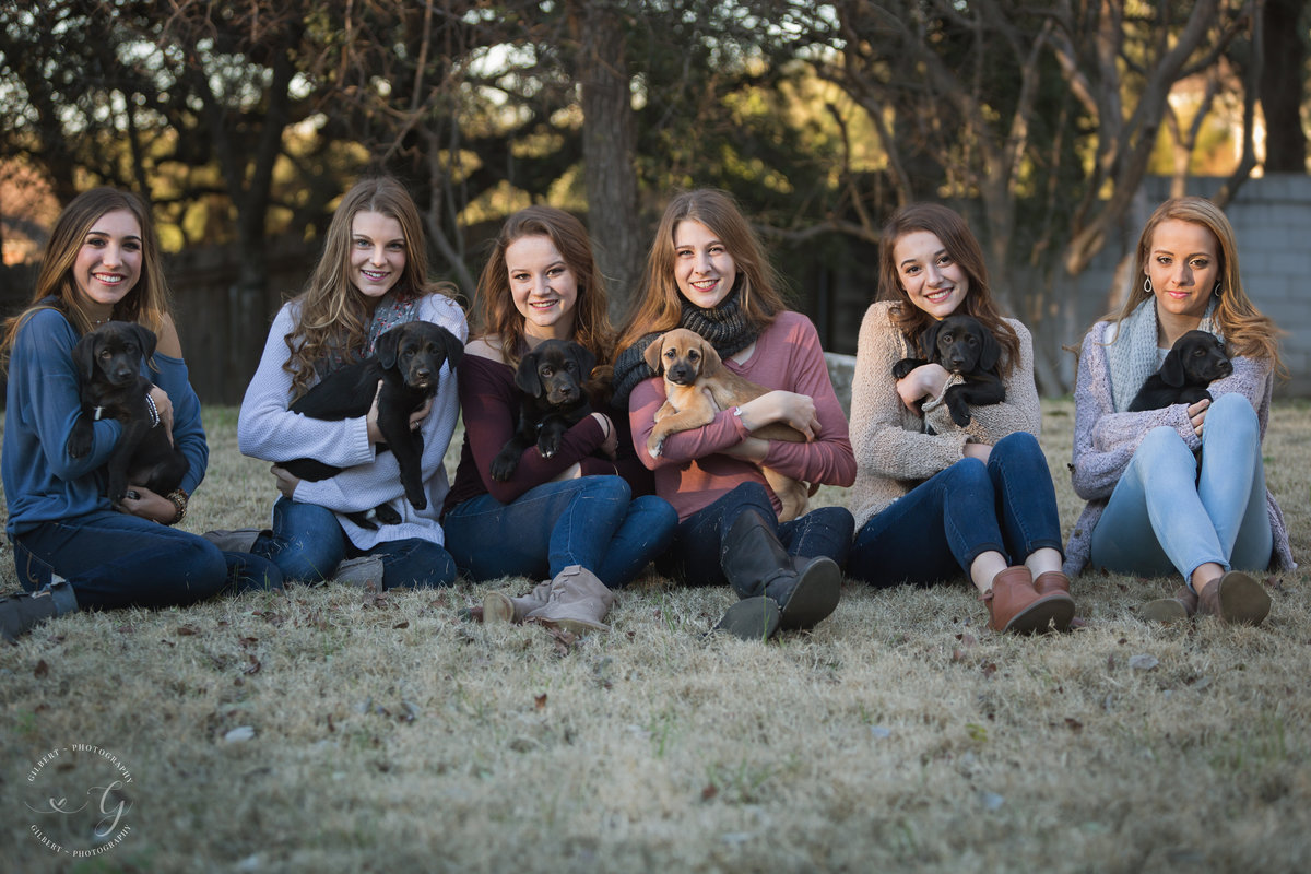spokesmodels with puppies 1