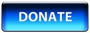 donate button blue