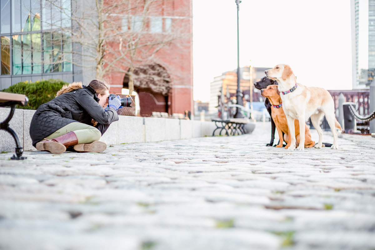 Lauren Dobish Photography taking pictures of dogs