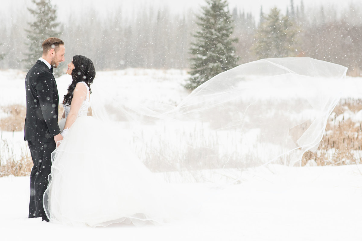 A bride and groom kiss in the falling snow while the brides cathedral length veil blows in the wind