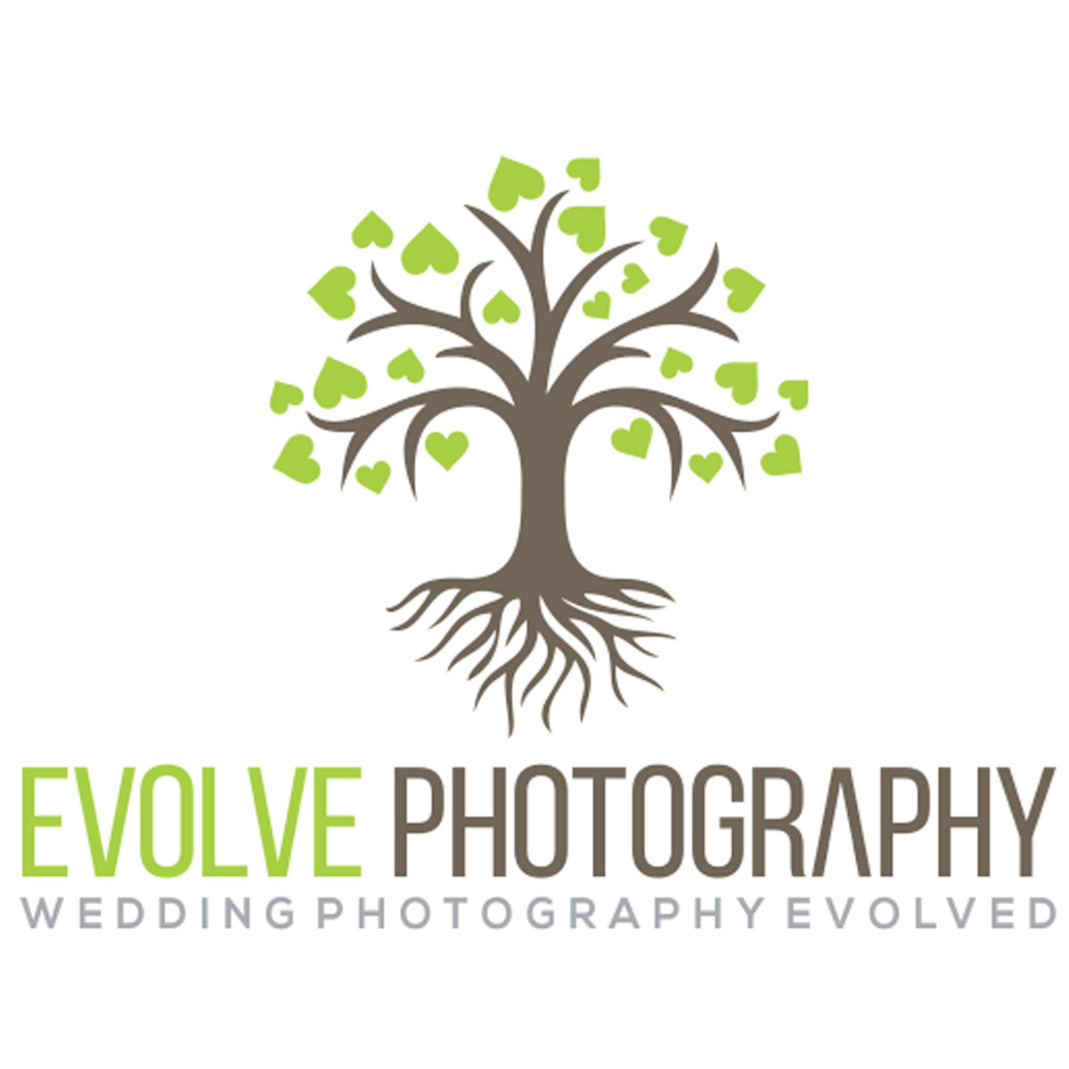 wedding photographers in devon