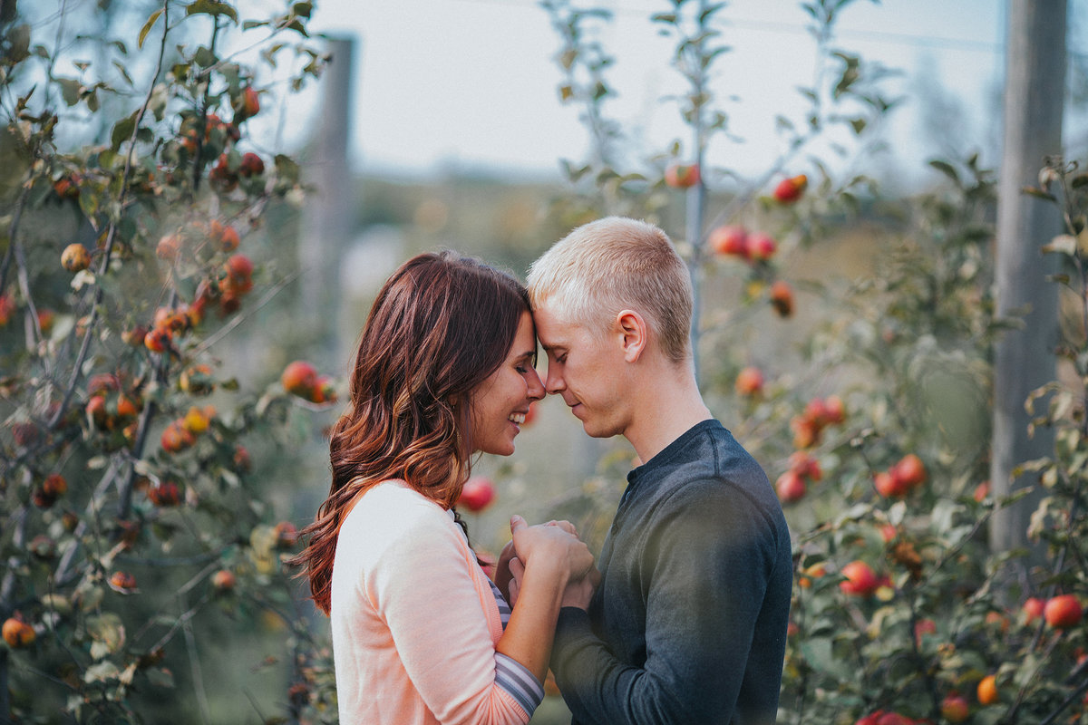 a couple hugging during their engagement photography session in an orchard