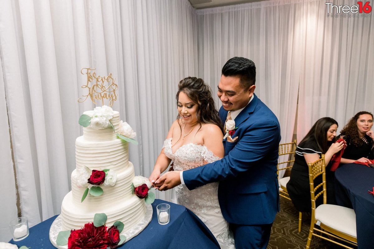 Husband and Wife cutting the wedding cake
