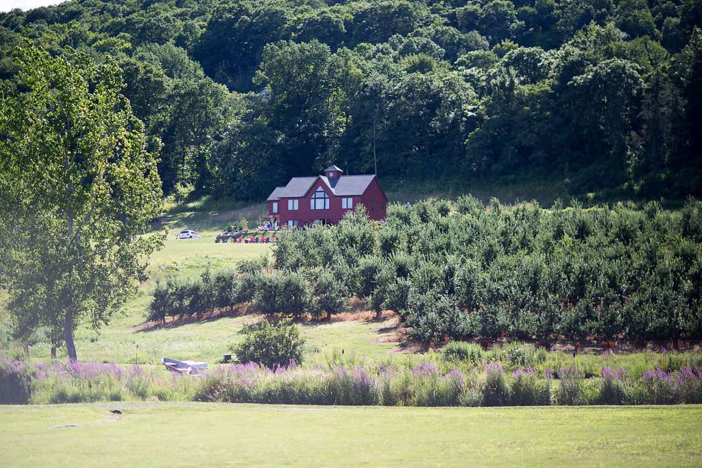 Monica_Relyea_Events_Dawn_Honsky_Photography_Nostrano_vineyard_barn_tastingroom