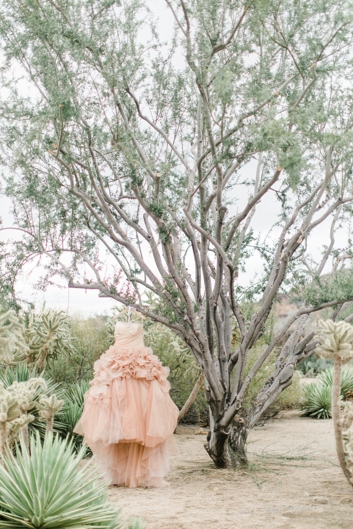 Smoke_Tree_Ranch_Palm_Springs_CA_Wedding_Photographer-5423