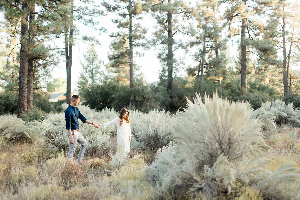Brigitte and Dan's Southern California Engagement Session
