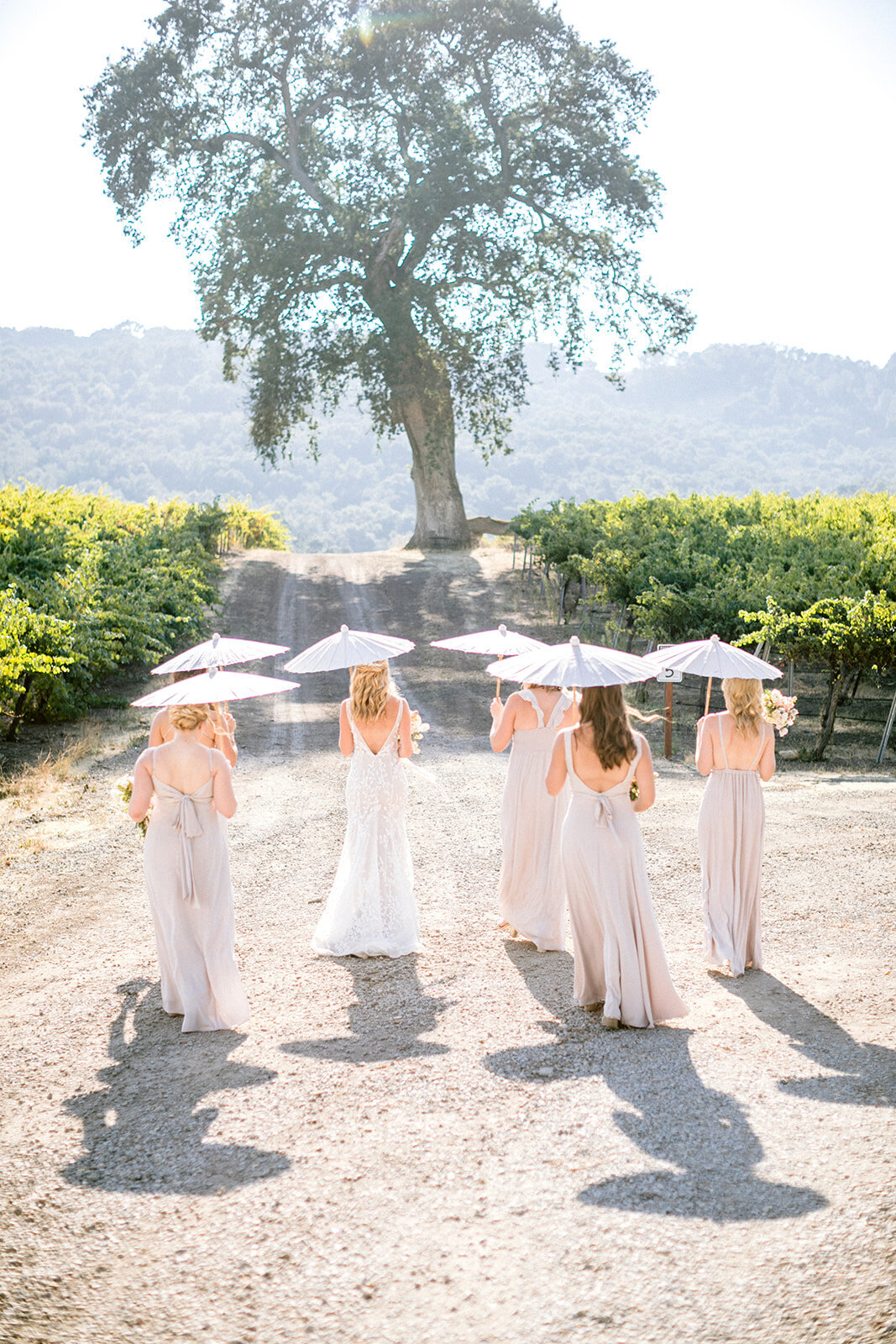 Amber-Lynn-Photography-Alice-Trevor-Holmes-Hammersky-Wedding_3