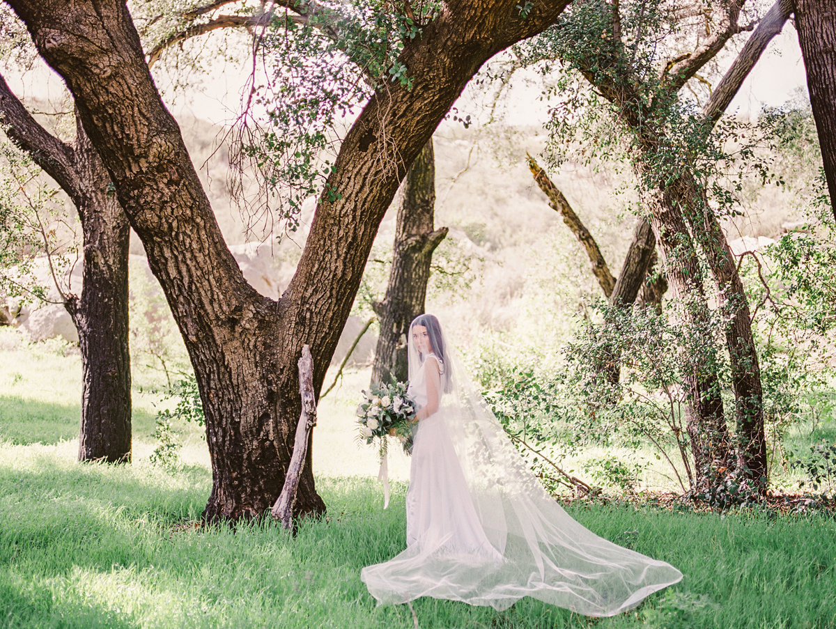 Babsie-Ly-Photography-Fine-Art-Film-Wedding-Bridal-Editorial-in-Hidden-Oaks-San-Diego-032