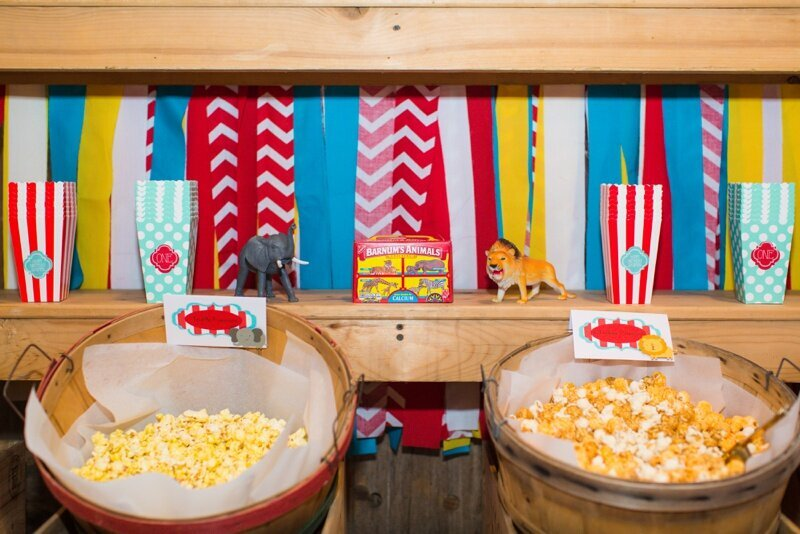 Circus Themed 1st Birthday Indianapolis Party Planner_0095