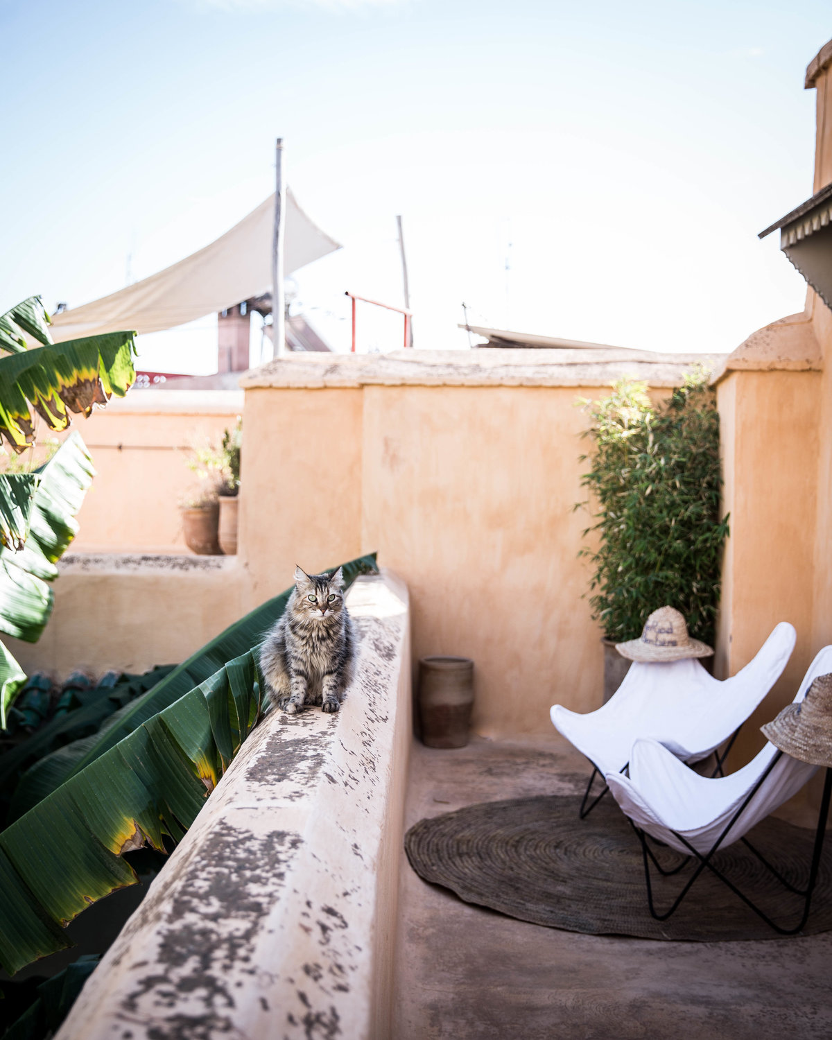marrakech terrace