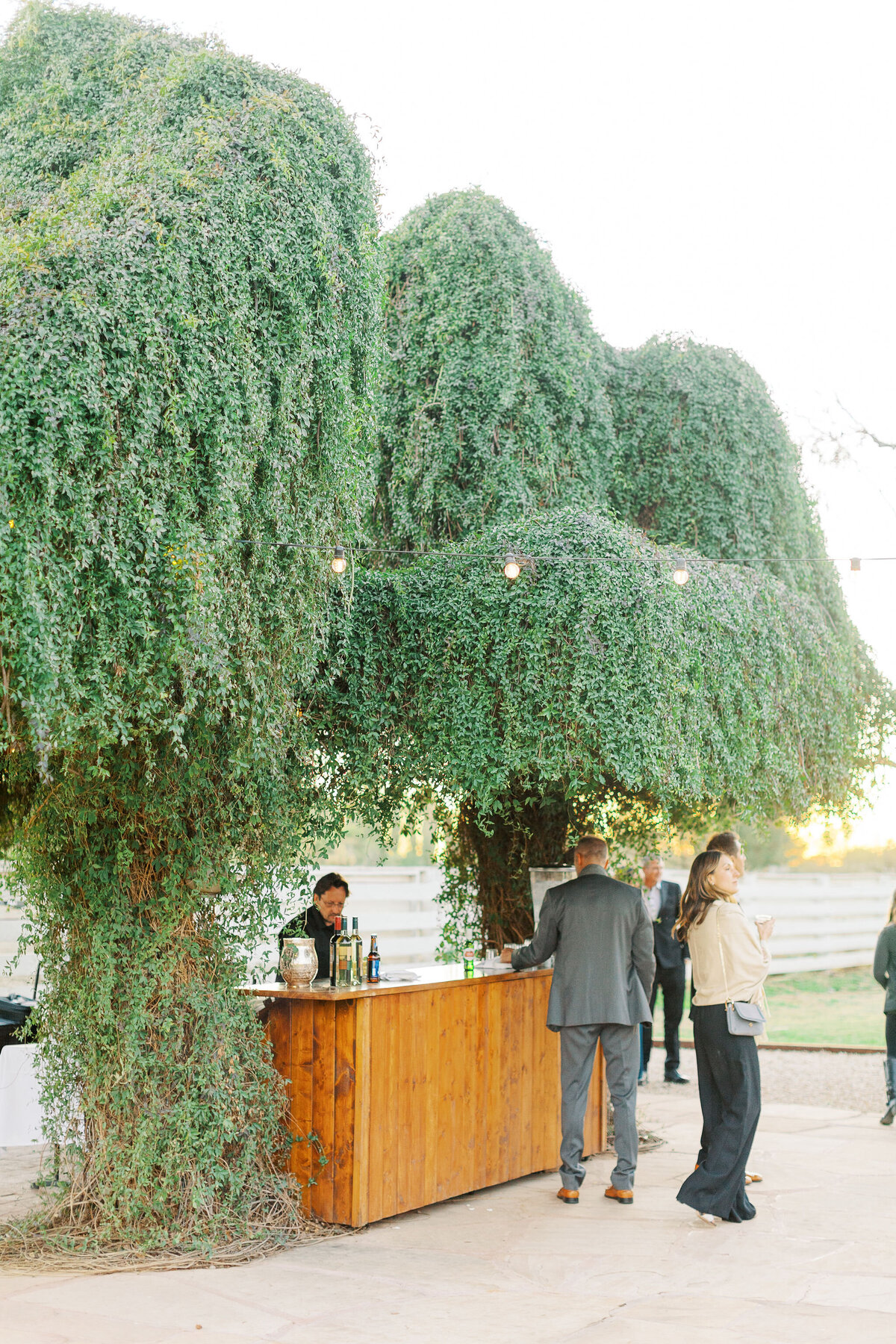 Farm-South-Mountain-Outdoor-Wedding-Mesa-Gilbert-Arizona--581