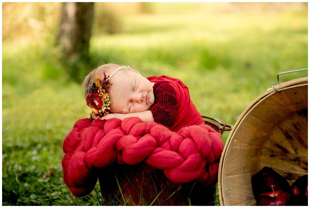Minnesota Newborn and Maternity Photographer