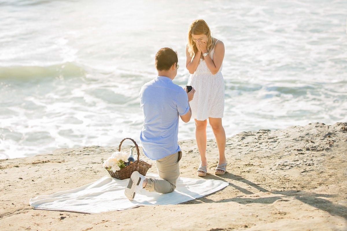 babsie-ly-photography-surprise-proposal-photographer-san-diego-california-sunset-cliffs-epic-scenery-018