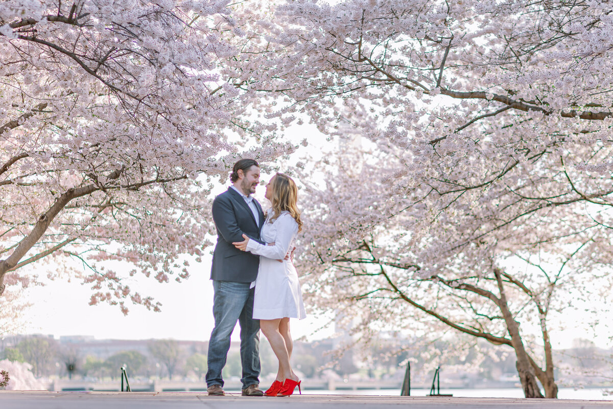 dc-cherryblossom-engament--9