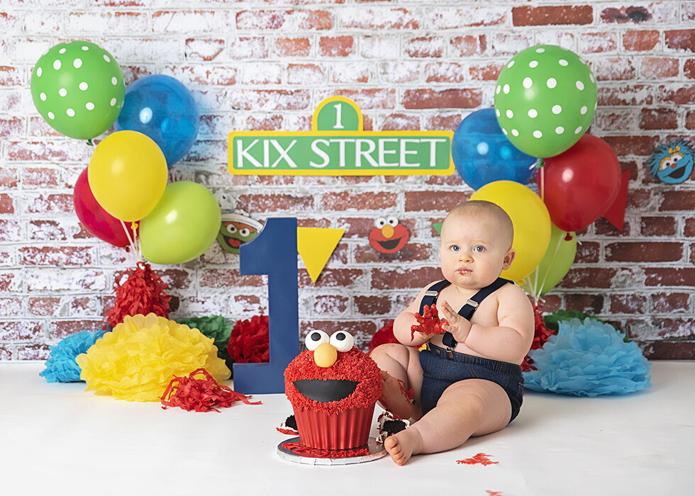 Jacksonville_One_year_Cake_smash_First_Birthday_photographer-4jpg