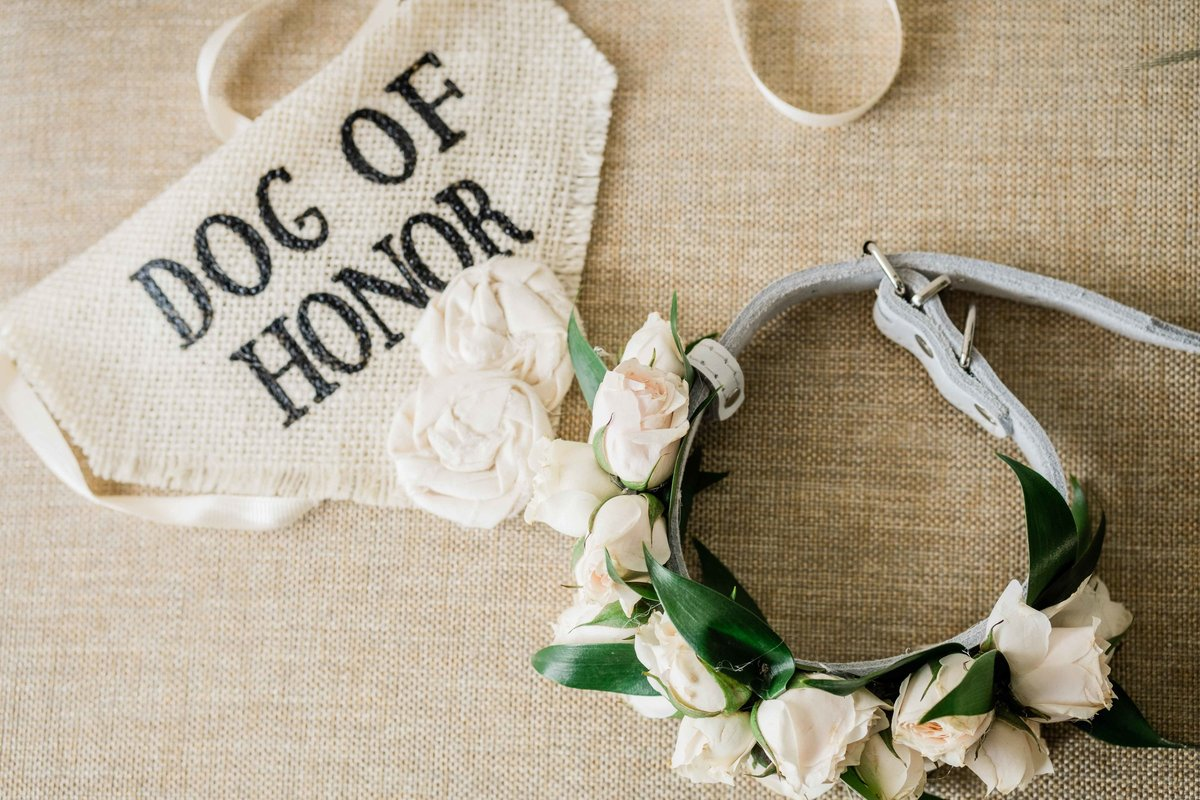wedding decorated dog leash