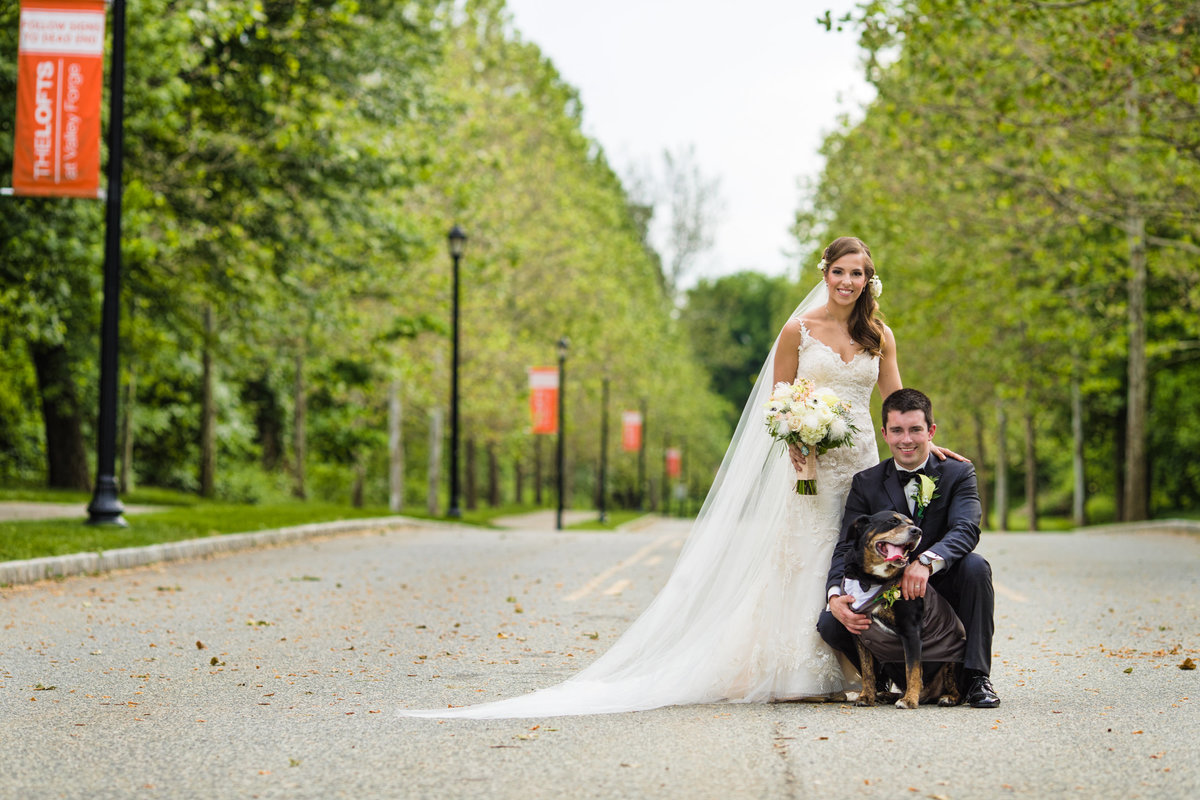 Bride and groom with dog as best man on pathway in park for wedding day portrait session
