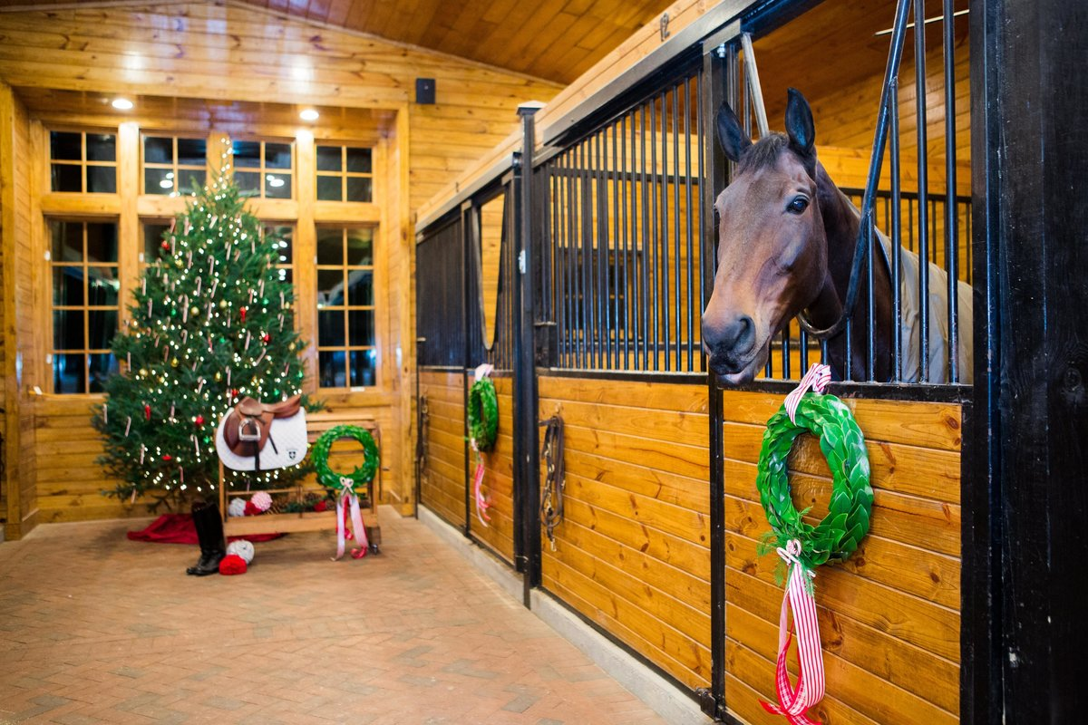 Windwood_Equestrian_Outdoor_Farm_Wedding_VenueArden_Photography_Christmas_Party136