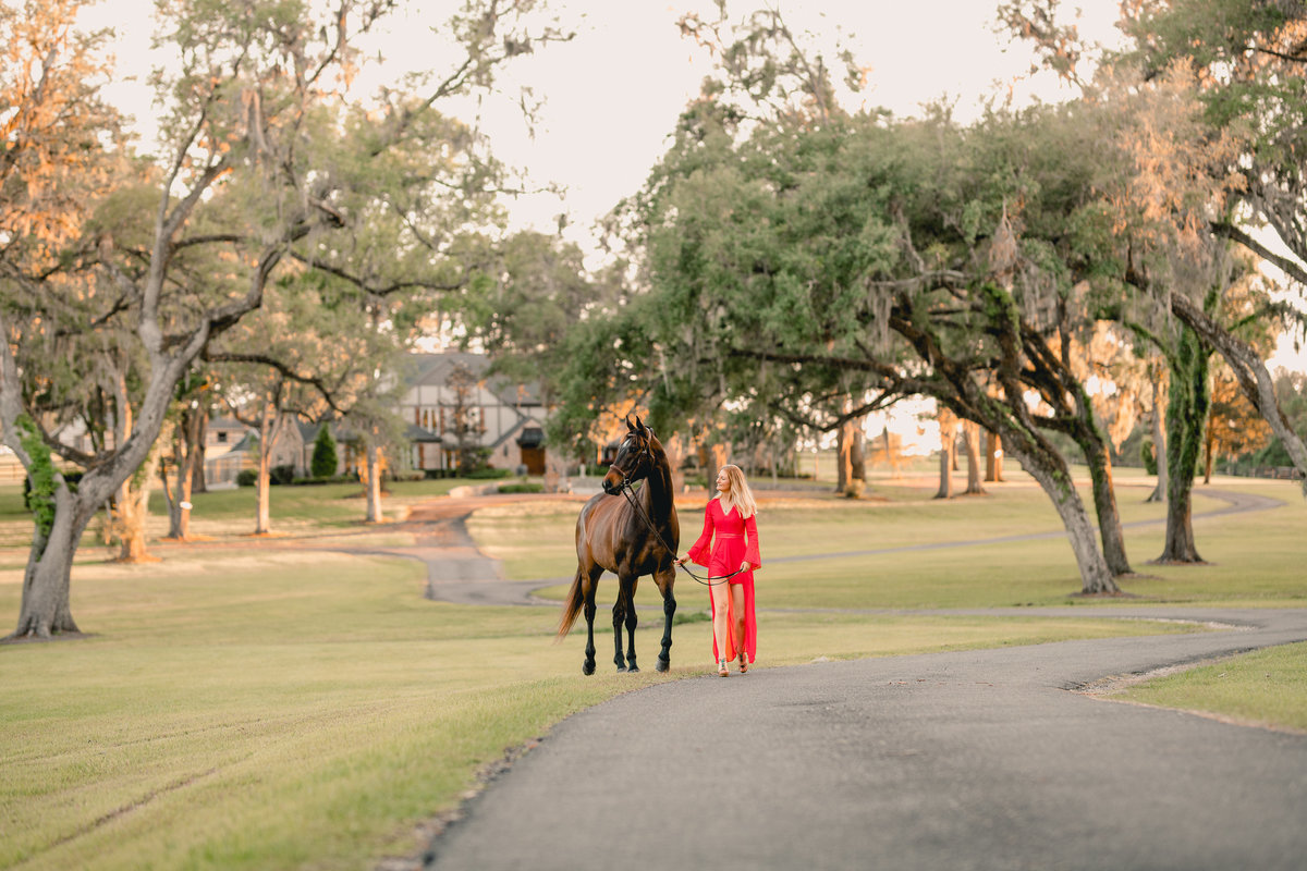 Thoroughbred horse photographer in Florida, horse and rider pictures.