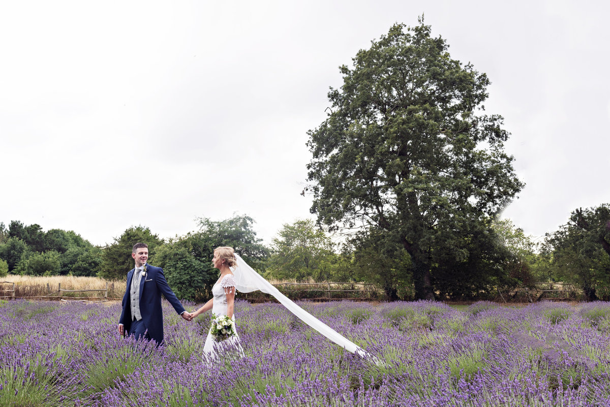 A Bride and Groom in the Lavender Fields