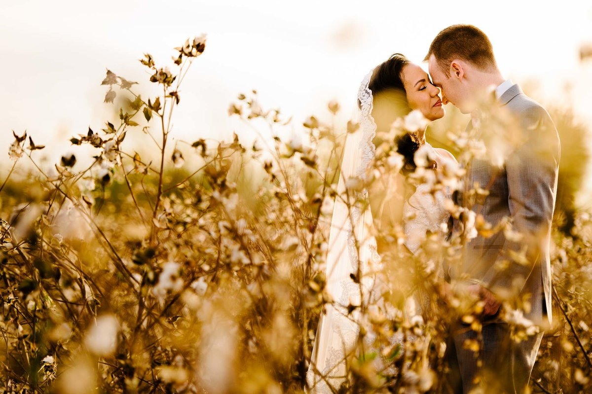 bride and groom portrait in cotton field in el paso texas by stephane lemaire photography