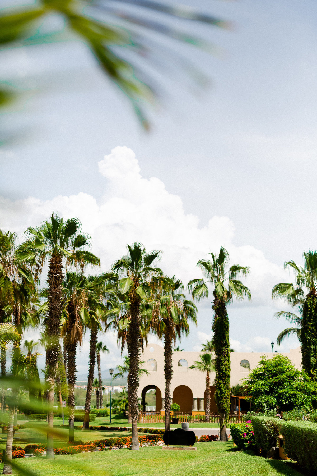 cabo-san-lucas-wedding-photographers-luke-and-ashley-photography5443