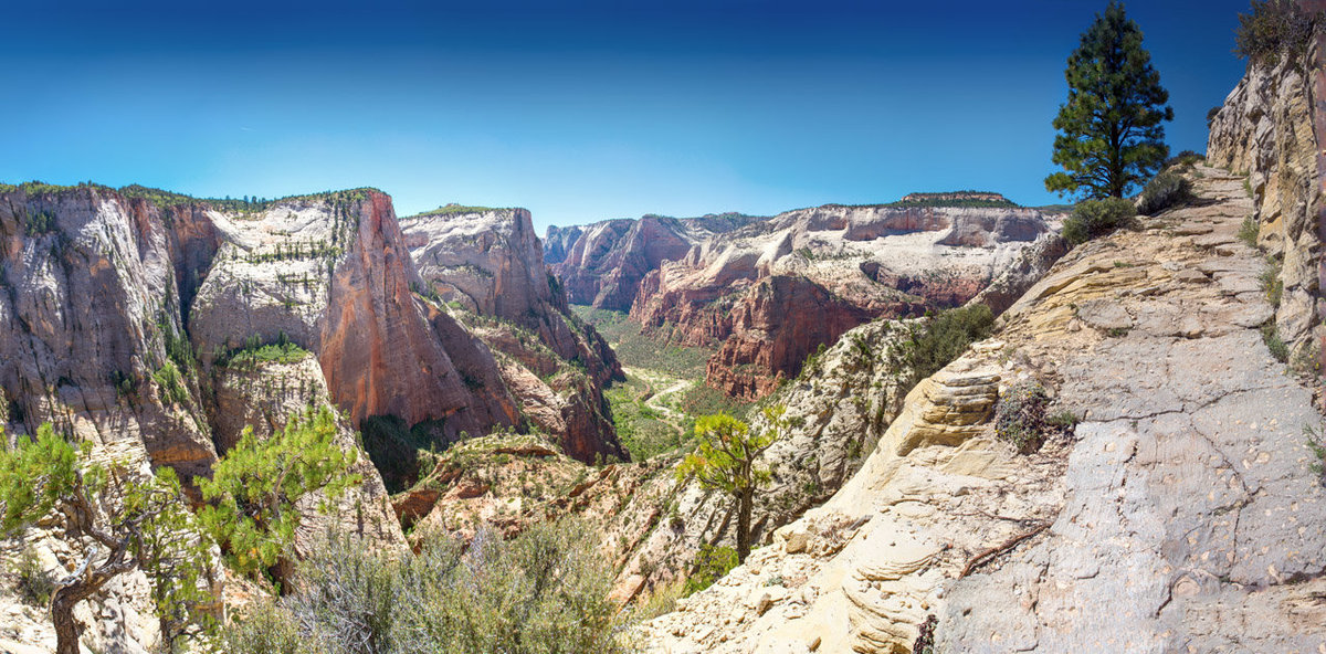 Zion_Observation Trail 04_Pan_Web