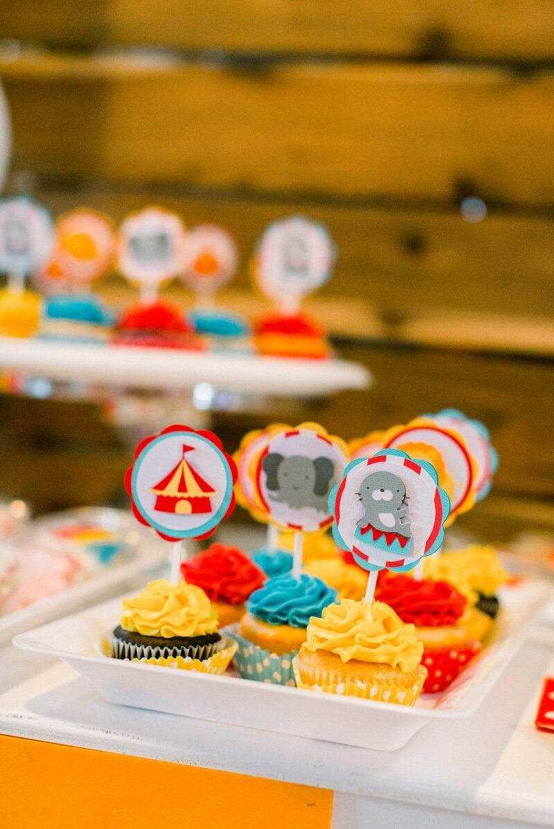 Circus Themed 1st Birthday Indianapolis Party Planner_0068