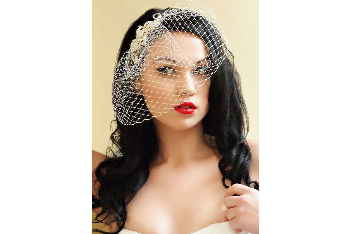 bird cage veil wedding photo