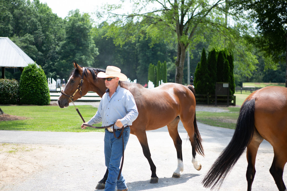 Windwood_Equestrian_Corporate_Events_Alabama_Equine_team_Building_28