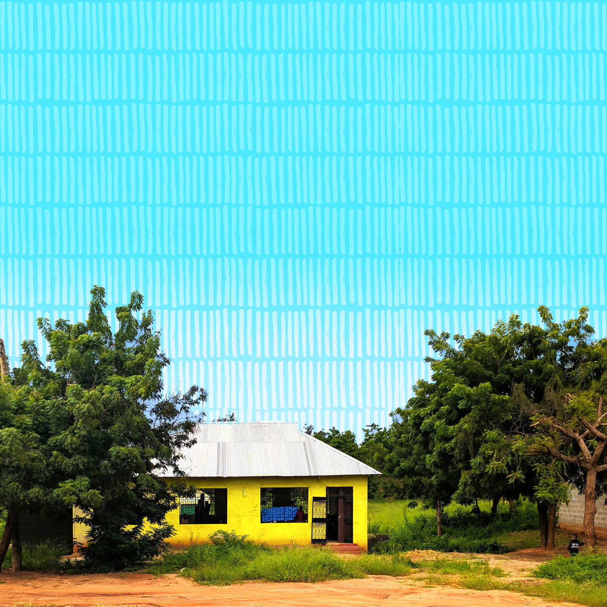 Copy of No Text Swahili Coast Coop Banner Photo Square