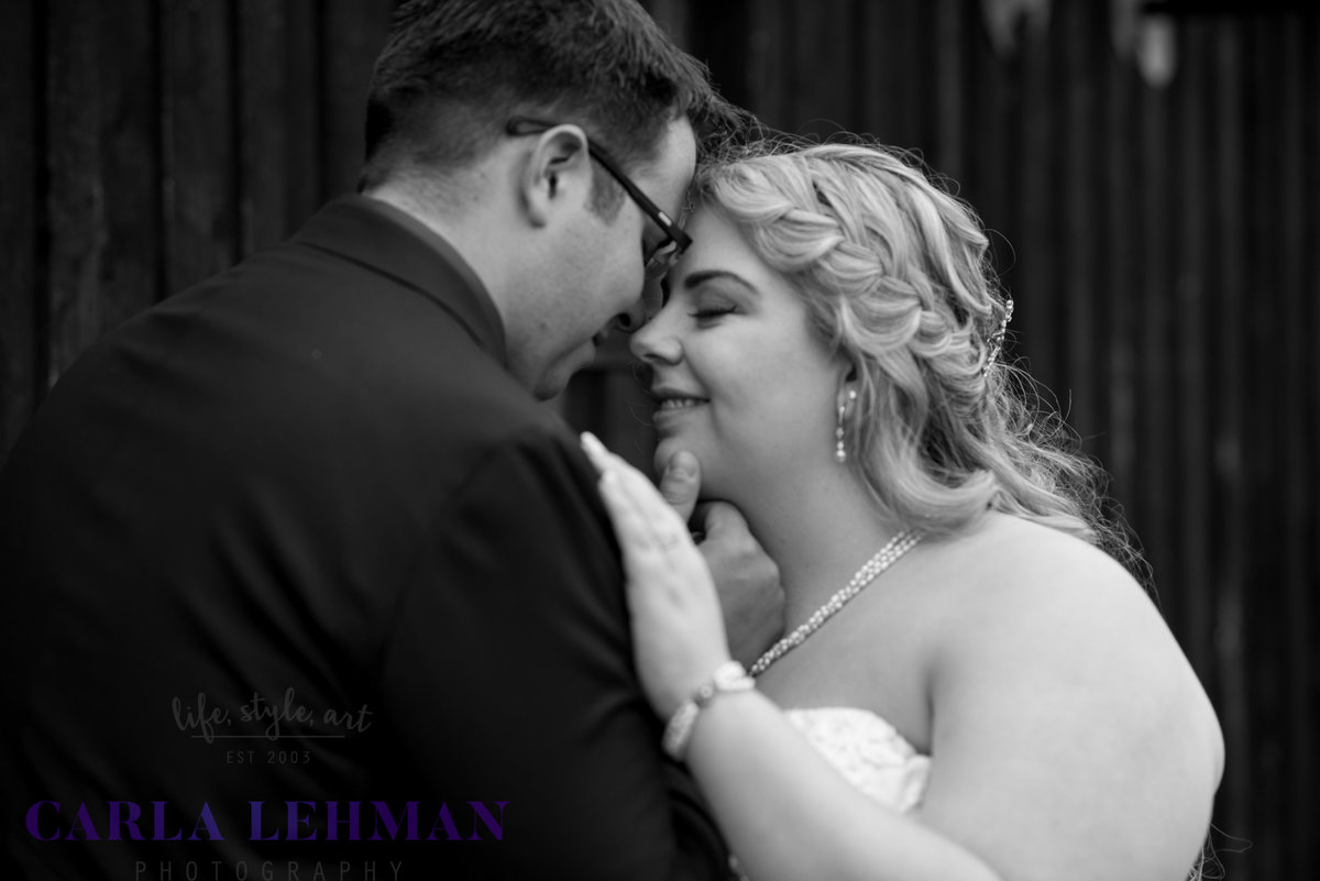 Edmonton-St.-Albert-Sherwood-Park-Tofield-Camrose-Wedding-Photographer-882