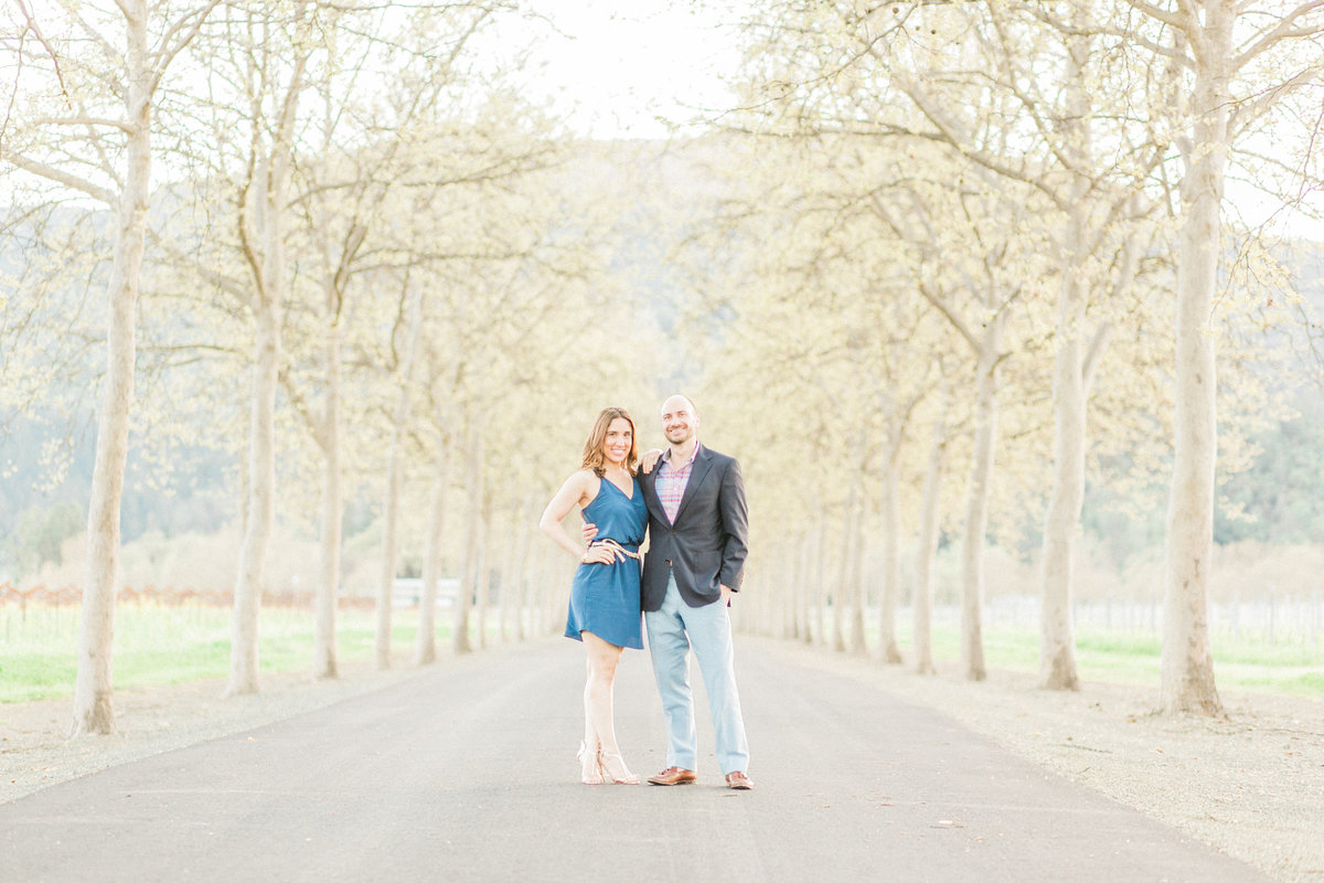 Beaulieu Vineyard Napa Engagement Session