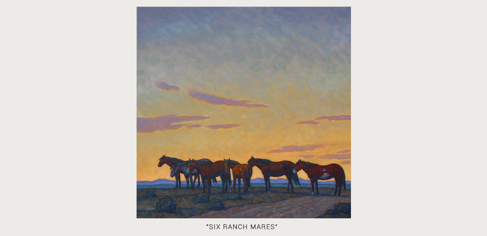 SIX RANCH MARES GALLERY