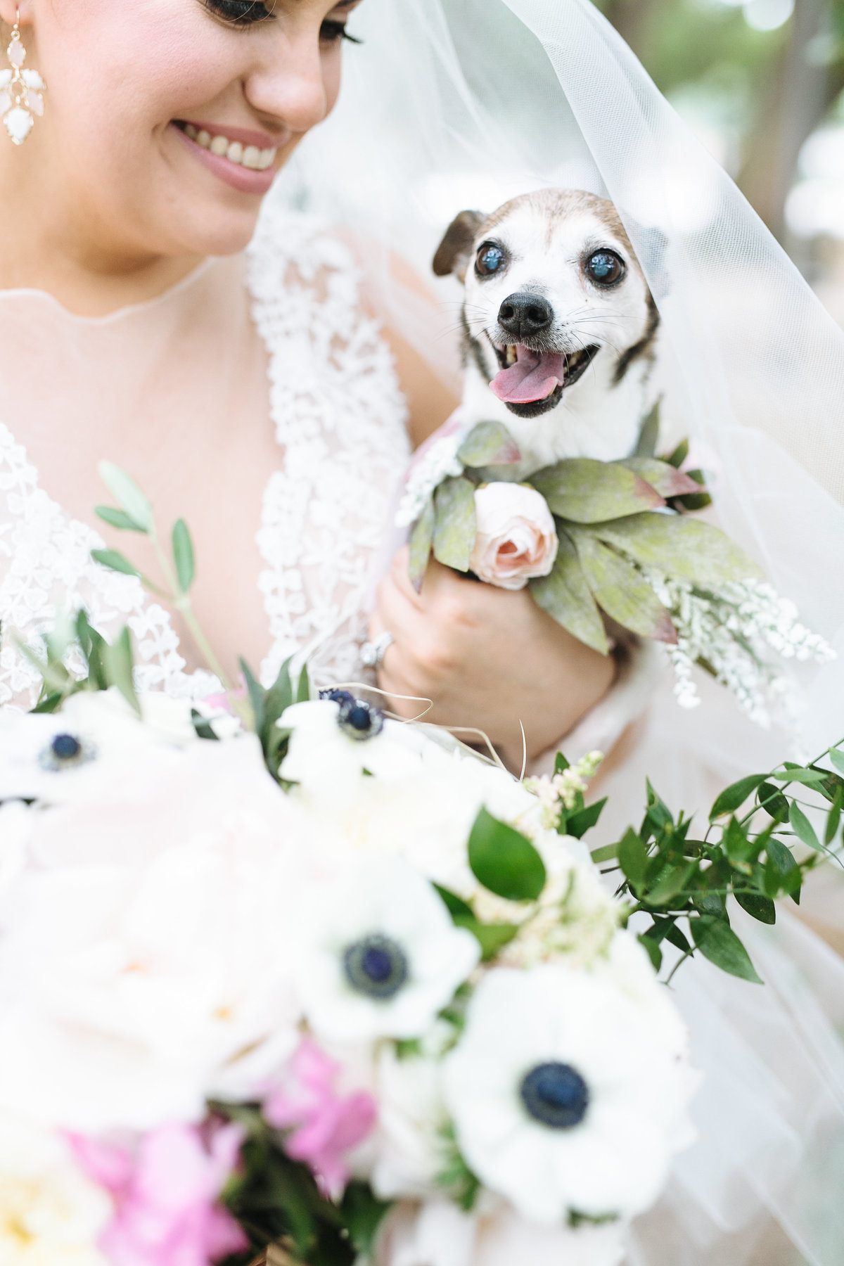 dogs should be in weddings! puppy at a houston wedding photography by smith house photo
