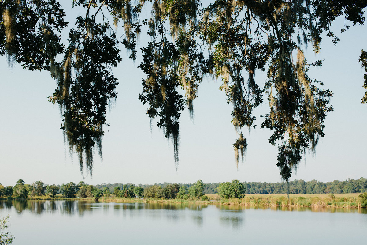 charleston-wedding-venues-middleton-place-philip-casey-photography-006