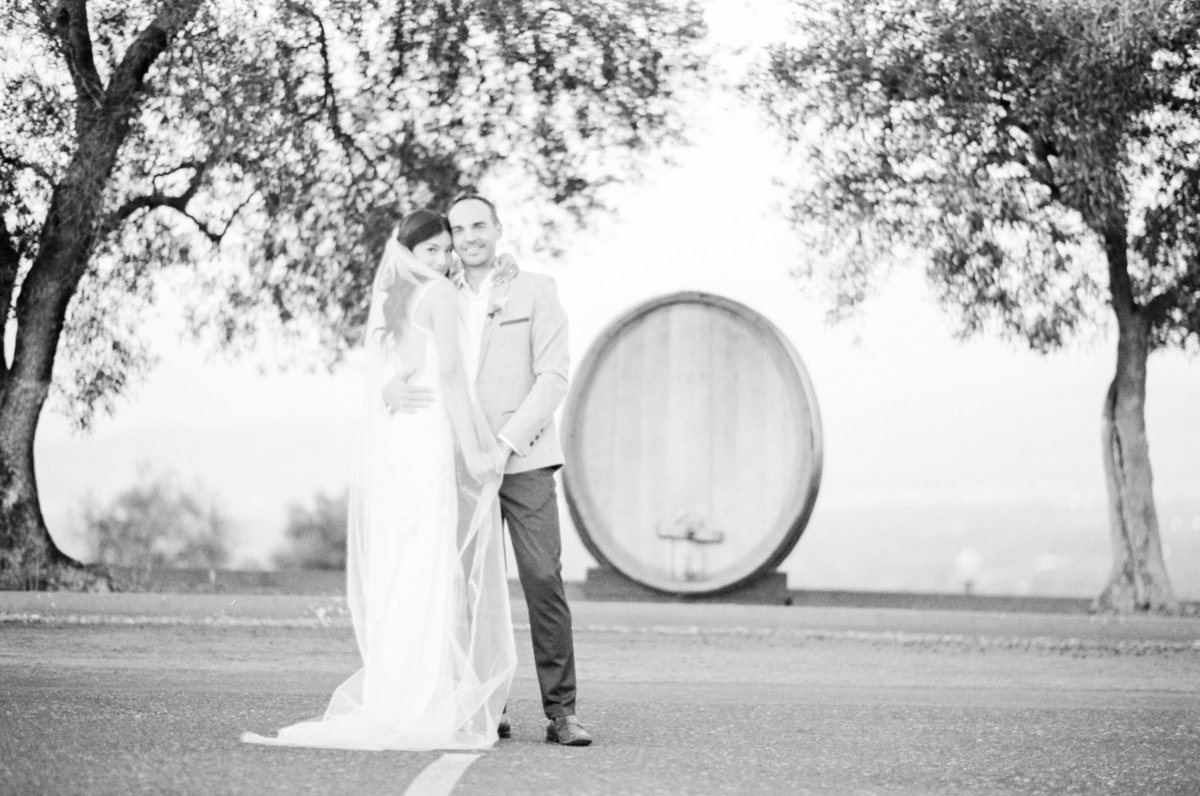 California Wine Country Fine Art Film Wedding