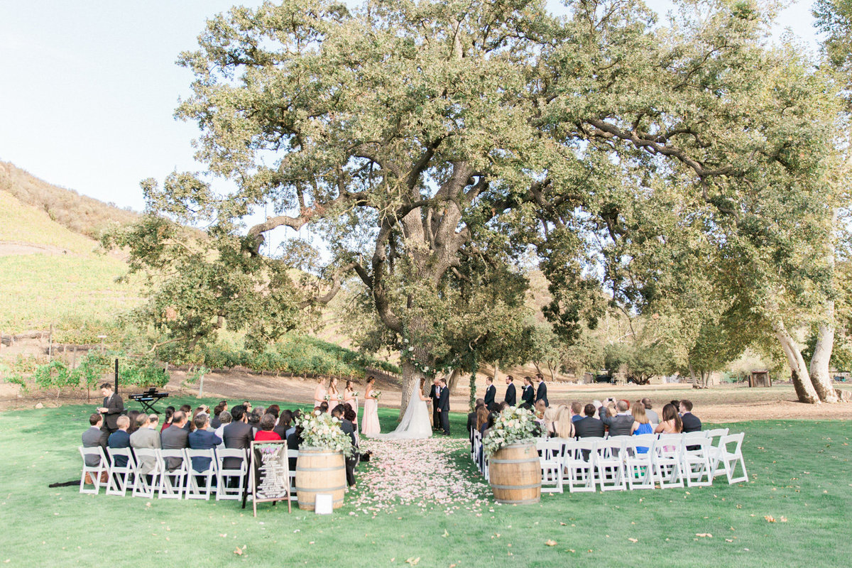 Triunfo Creek Vineyard Wedding-6759