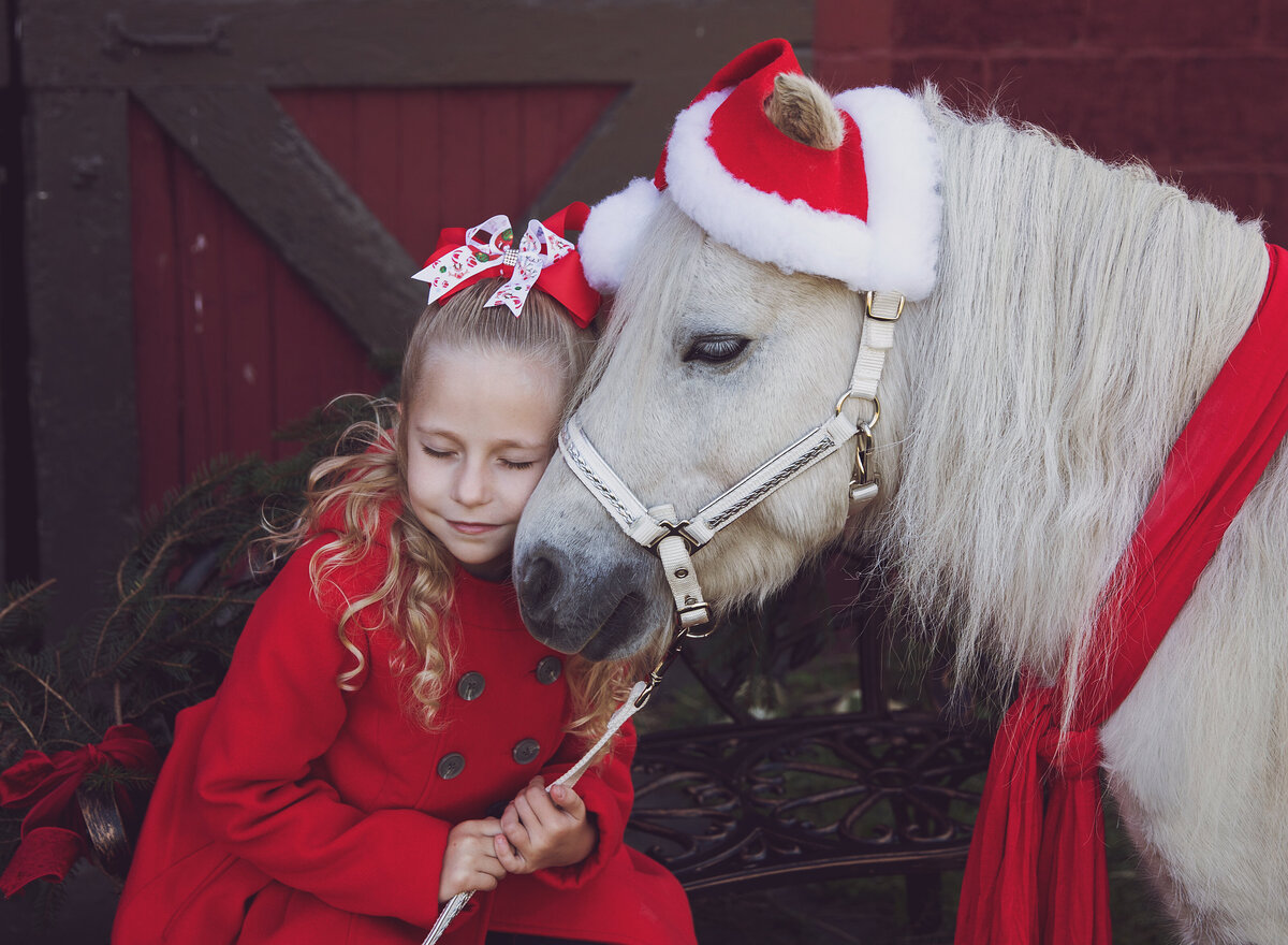 South_jersey_christmas_mini_sessions_pony