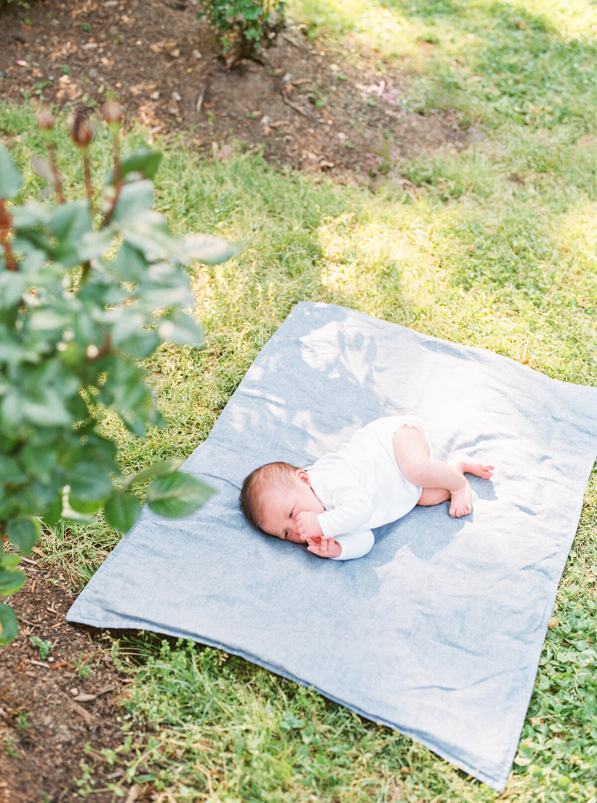 ScoutNewbornSession-LaurenJollyPhotography-61