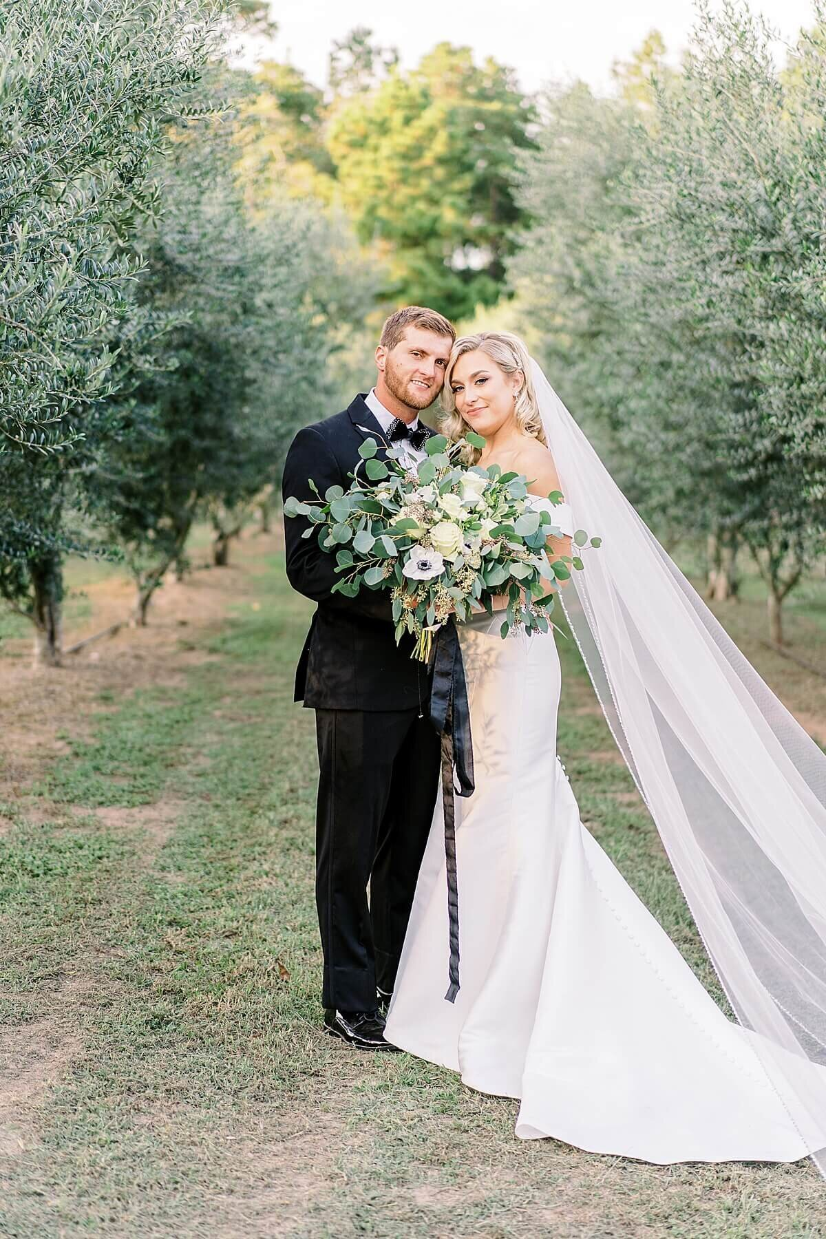 Bride and Groom Portraits in the Olive Grove at Annex Wedding Venue photography by Alicia Yarrish Photography