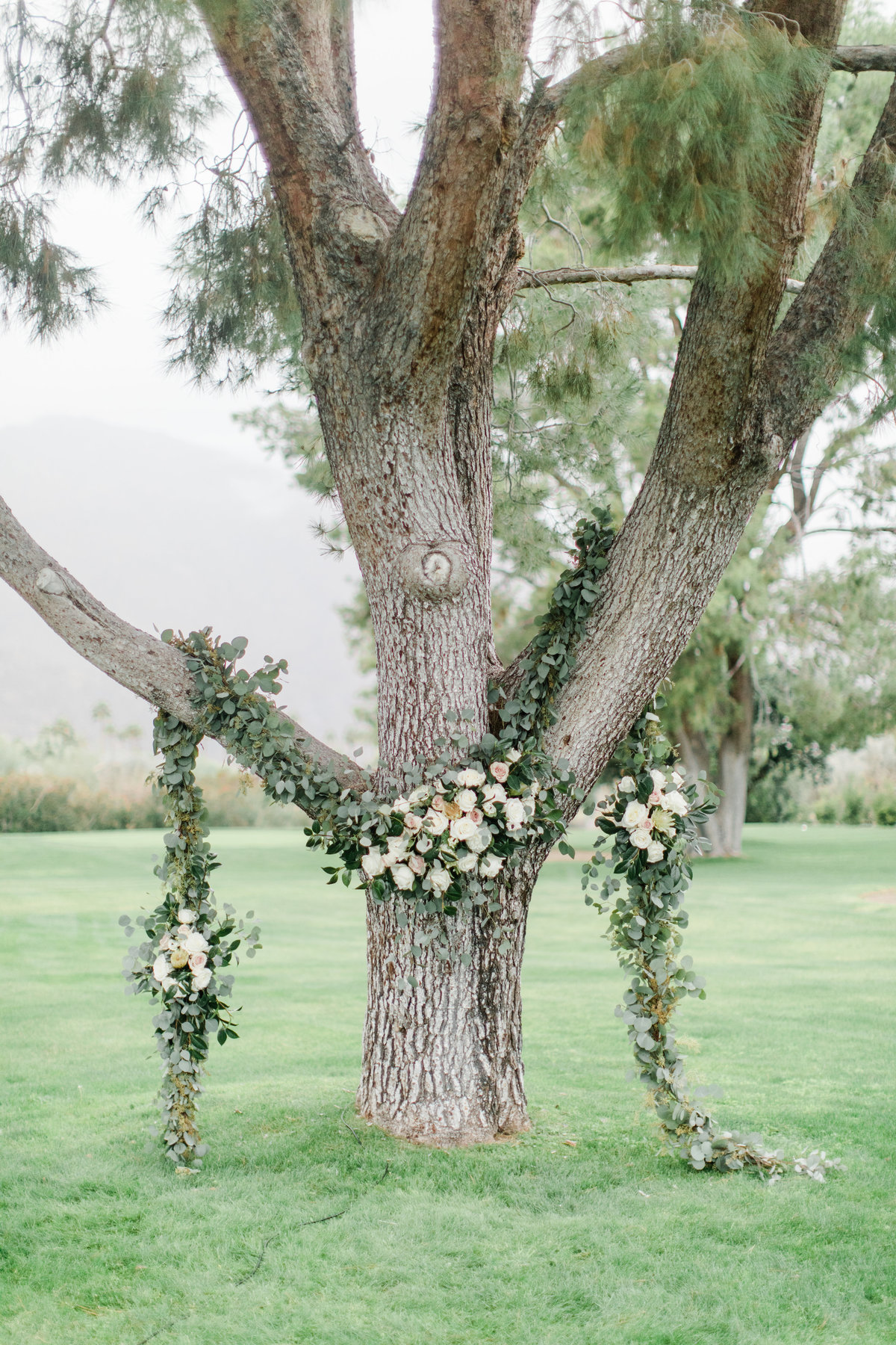 Smoke_Tree_Ranch_Palm_Springs_CA_Wedding_Photographer-5881