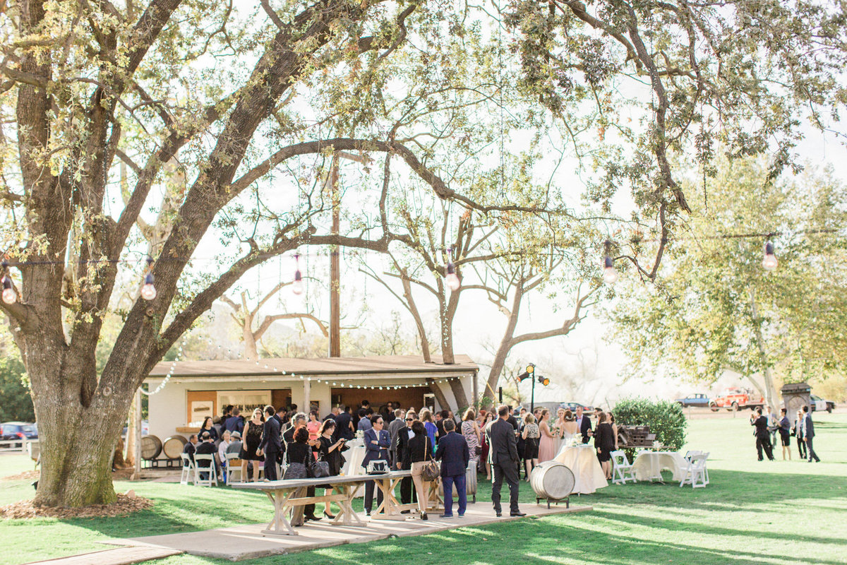 Triunfo Creek Vineyard Wedding-7026